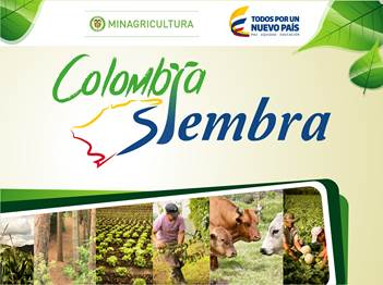 colombia siembra